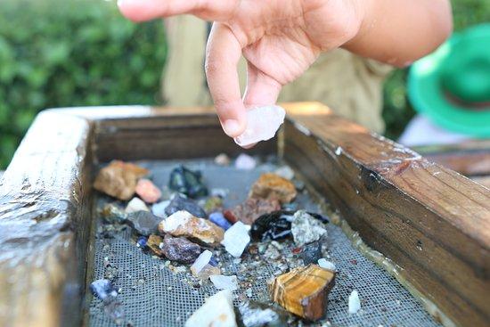 Yogi Bear's Jellystone Park Camp-Resort Luray: Gem Mining