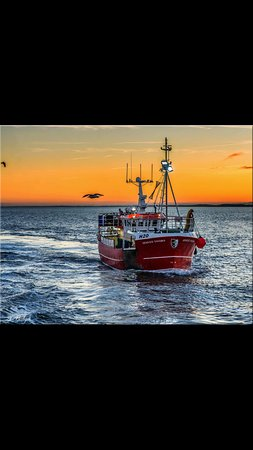 Fishing boats return, see Europes largest shellfish port in action.