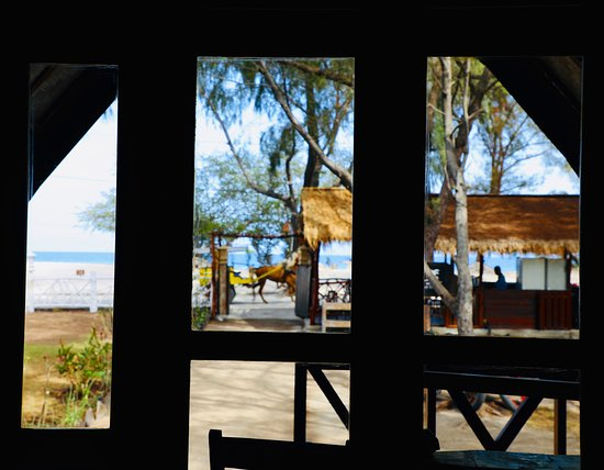 View from Beach Bungalow's large windows
