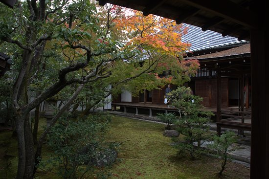 Tenryuji Temple: interni