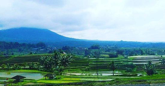 Good Bali Tour