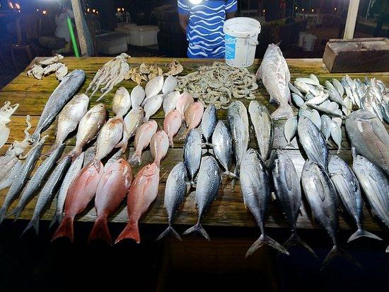 Kuma Seafood Restaurant: Best sea food ever!