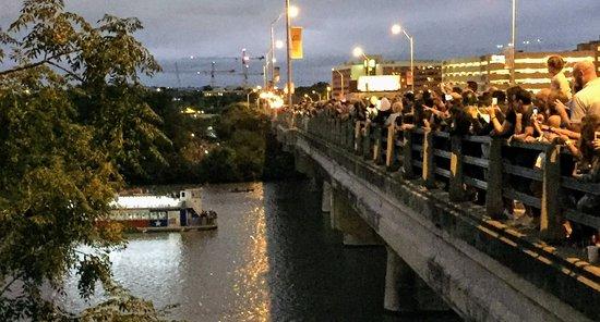 Hundreds line Austin's Congress Avenue Bridge hoping to see the bats emerge.