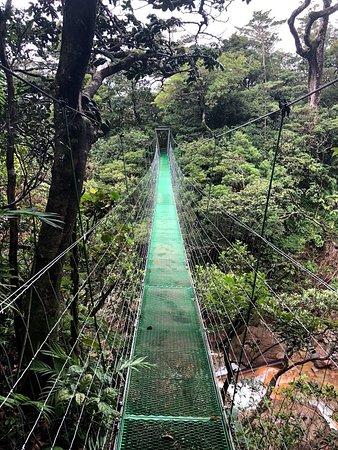 Suspension bridge at Miravalles Volcano