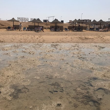 Marina Lodge at Port Ghalib: Stav plaze fakt zoufalý a more nikde...
