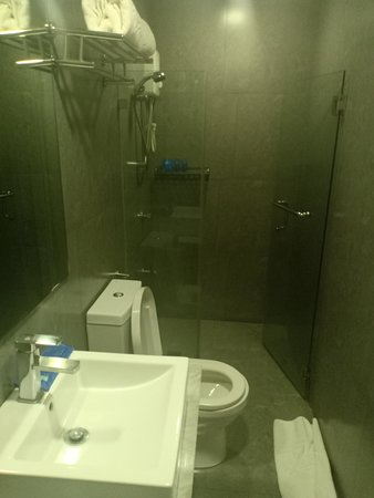 Z Pad Residences: Their shower room - with complimentary toiletries.