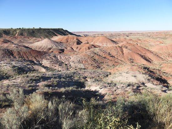 Petrified Forest National Park, AZ: Painted Desert Rim Trail