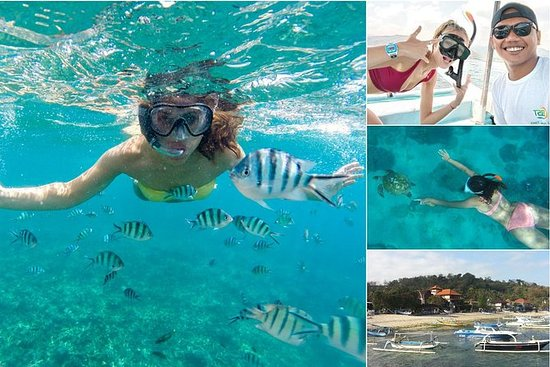 Blue Lagoon Bali Snorkeling at...