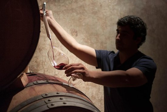Autentisk Boutique Wine Tour - Lujan...