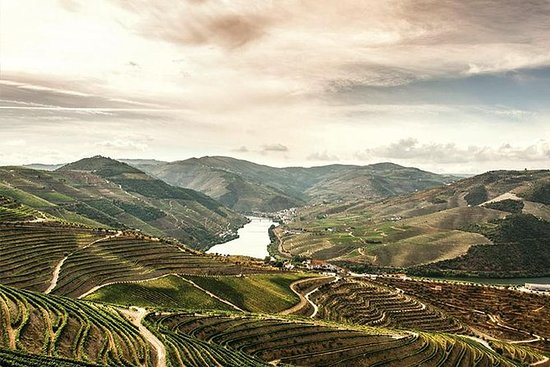 Full-Day Douro Valley Wine and Food...