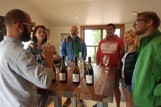 游轮游览马尔堡葡萄酒之旅