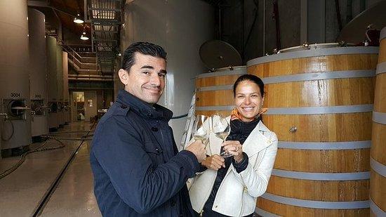 私人全日驾驶马尔堡葡萄酒之旅