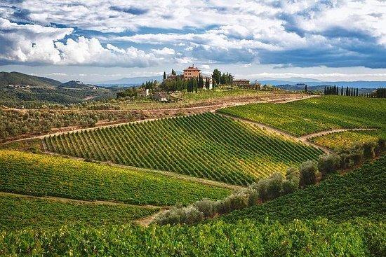Exclusive VIP Wine Tour Antinori and Verrazano in Chianti Classico: Wine Tour Antinori and Verrazano in Chianti Classico