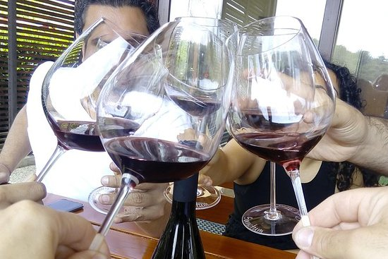 Wine tasting tour to 3 excellent...