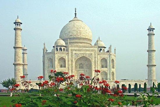 Samma dag Taj Mahal resa med bil