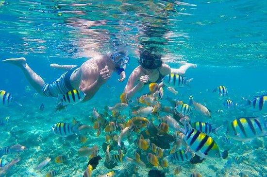 Gili Paradise Islands Esperando do...