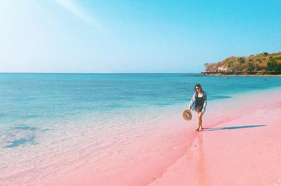 Lombok Pink Beach Island - Hopfen...