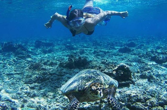 Lombok Gili Islands Schnorchelausflug...