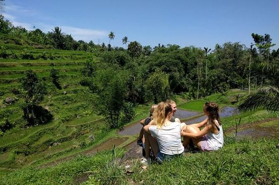 Lombok Tetebatu Rice Terrace Heaven Tour