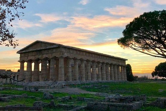 Templi Greci di Paestum Admission...