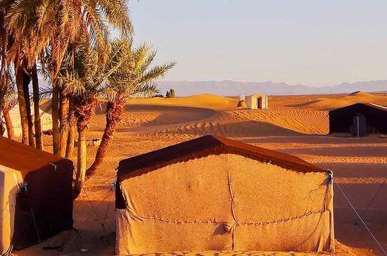 Depuis Marrakech: visite de deux...