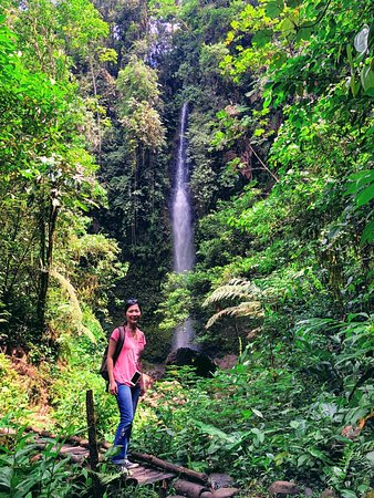 Madre Selva Tours: waterfall