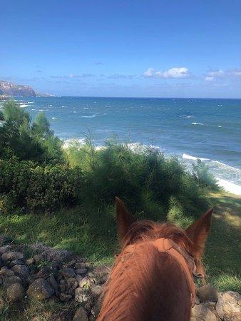 Maui Mountain Activities, LLC صورة فوتوغرافية