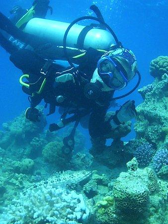 """Diving Club """"Nautilus-aqaba"""": а рыбёху нашли?)"""
