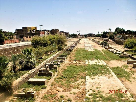 Луксор, Египет: Sphinx ave Luxor Egypt