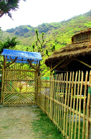 Bamboo Cottage - The Solitude Camp, Palampur 사진
