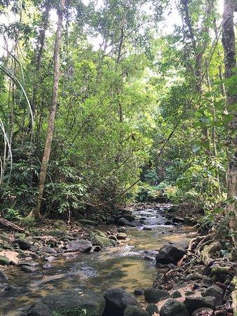 Ton Prai Waterfall: 沿途的溪流