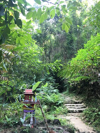 Ton Prai Waterfall: 沿途的步道