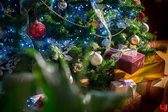 Barin: Подготовка к Новому году