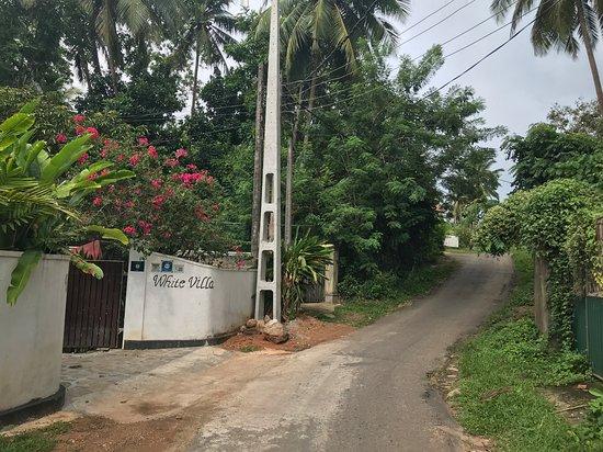 Дорога к White Villa