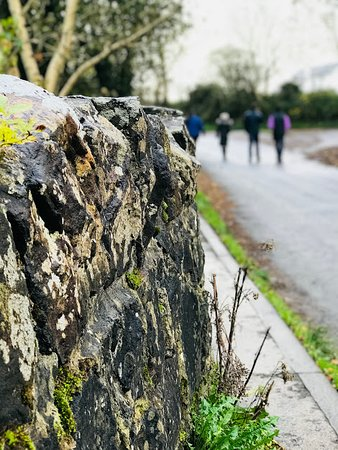 Old moss covered stone walls