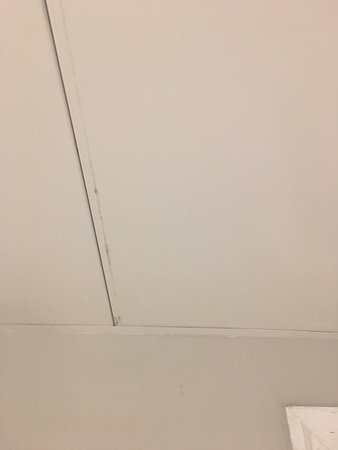 Mold in the bathroom.  Only two examples.