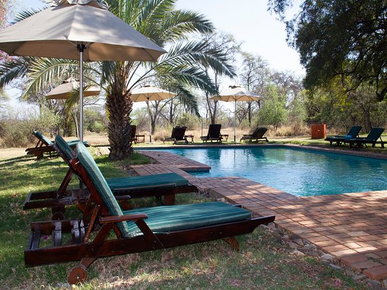 Unparalleled South African Safari Holiday - Review of Mziki