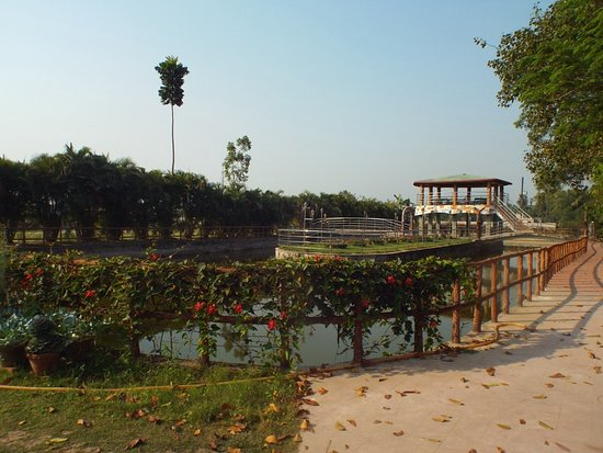 Nirala Resort: Common area