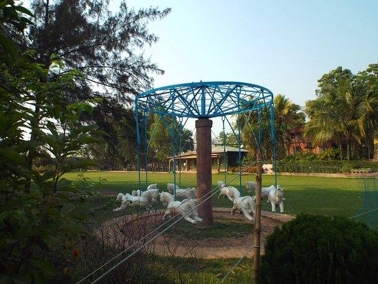 Nirala Resort: MGR