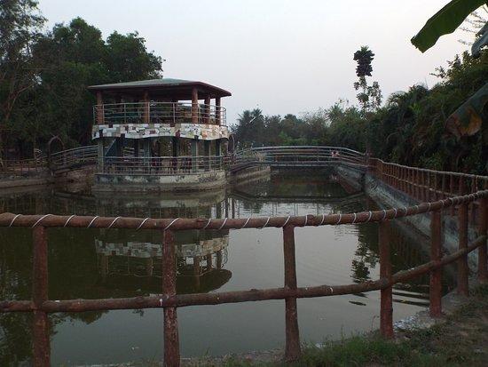 Nirala Resort: A water body