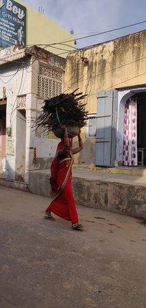 Mahendra Travel: Auto con Autista Rajshathan/Agra/Varanasi khajuraho Delhi.