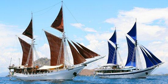 SeaTrek Sailing Adventures