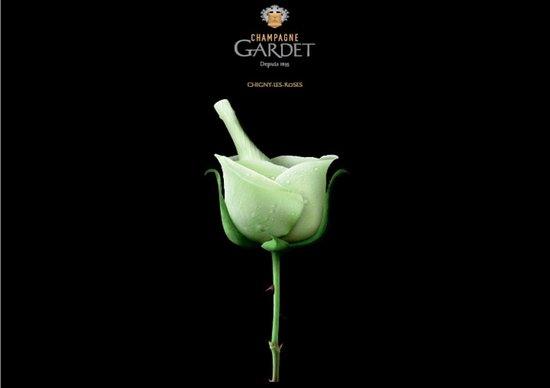 Chigny les Roses ภาพถ่าย