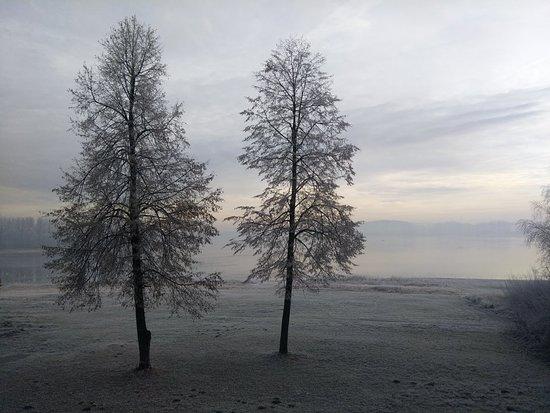 Fotografia de Mierzecice
