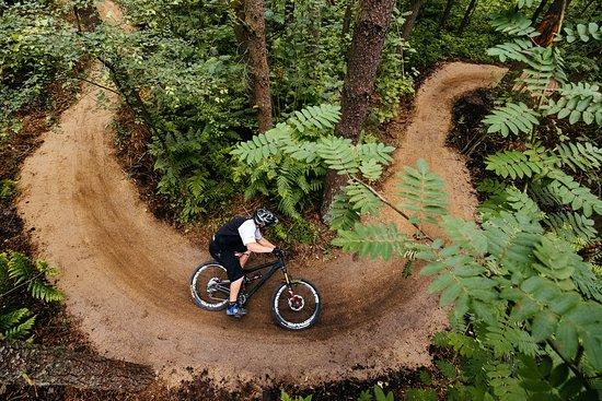 Sheffield, UK: Mountain biking at Lady Cannings