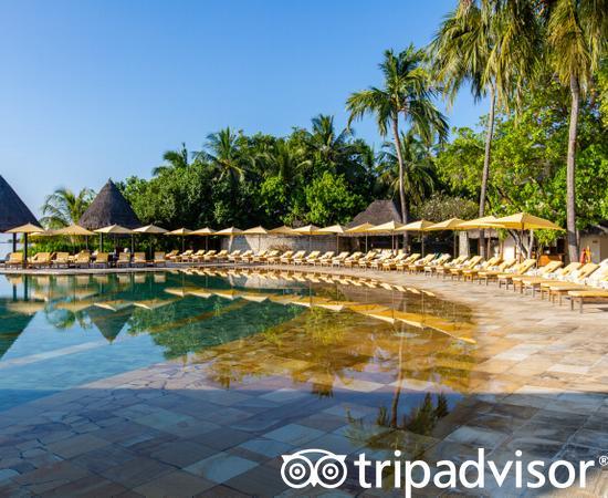 The Main Pool at the Four Seasons Resort Maldives at Kuda Huraa