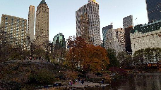 뉴욕 사진