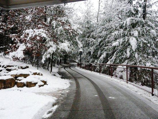 Meditation Trail Upper- Winter