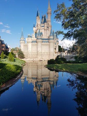 Reflexos da Disney 😍