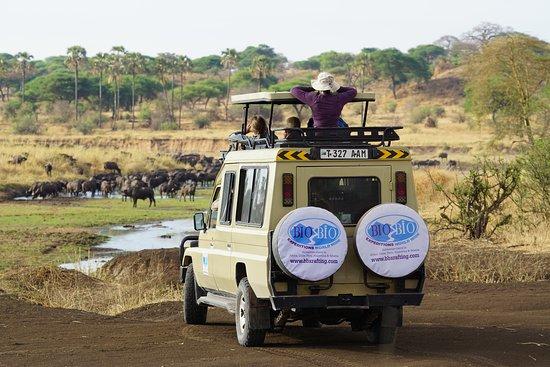 Bio Bio Expeditions Worldwide